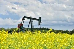 Pompa funzionante Jack del pozzo di petrolio fotografia stock libera da diritti