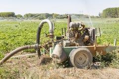 Pompa idraulica per irrigazione agricola Fotografia Stock
