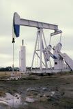 Pompa Jack White Fotografia Stock Libera da Diritti