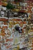 Pompa, Mały Walsingham, Norfolk, UK zdjęcie royalty free