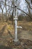 Pompa Wodna W parku Zdjęcie Stock