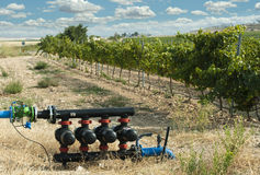 Pompe ad acqua per irrigazione delle vigne Fotografia Stock