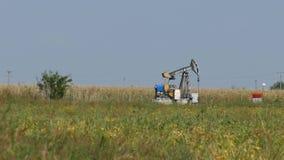 Pompe a pistone del pozzo di petrolio Pompe di olio funzionanti Fossile a energia di combustione mining archivi video