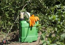 Pompe professionnelle de jet et d'autres outils dans le jardin Usines de pulvérisation saisonnières de tomatoe, arbres à la ferme photographie stock libre de droits