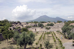 Pompei Stock Afbeeldingen