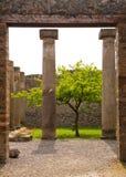 Pompei - Ancient Rome - House of Octavius Quatro Stock Image