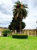 Pompeia Foto de Stock