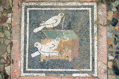 Pompeian mosaic. Pompeii (Naples - Italy) Stock Photo