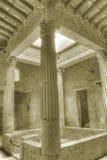 pompeii губит sepia Стоковая Фотография