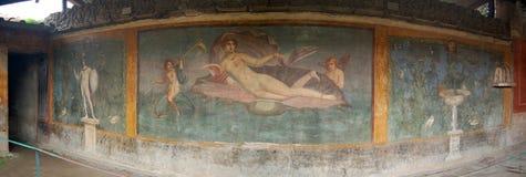 pompeii Fotografia Royalty Free