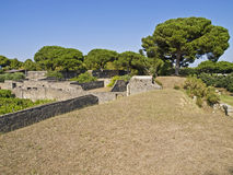 The pompeii Royalty Free Stock Images