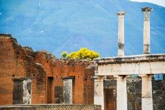 pompeii Foto de archivo libre de regalías