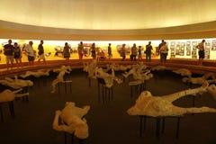 Pompeii et Europe exposition 1748†«1943 à l'amphithéâtre à Pompeii À l'intérieur de la pyramide Photos libres de droits