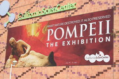 Pompeii Exhibit Royalty Free Stock Photography