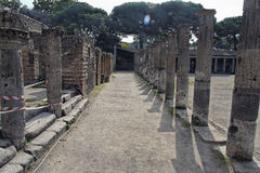 Pompeii Gladiators Square Royalty Free Stock Images