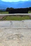 Pompeii, Italie : mosaïque photos stock