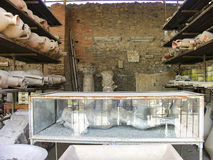 POMPEII ITALIEN - Maj 2006; Kropp av mannen som bevaras i gipsförband w Royaltyfri Bild