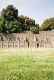 Pompeii Meadow with Ancient Walls in Background Royalty Free Stock Photo