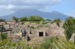 Pompeii and Mount Vesuvius in the background Stock Image