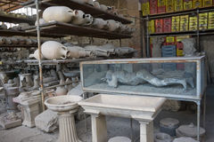 Pompeii museum Stock Photography