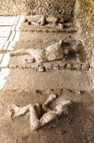 Pompeii victims Royalty Free Stock Photo