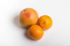 Pompelmi ed arance Fotografia Stock