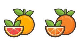 Pompelmo del fumetto e vettore arancio Immagini Stock