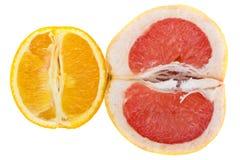 Pompelmo ed arancio Immagini Stock Libere da Diritti