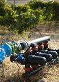 Pompes à eau pour l'irrigation des vignes Photo stock