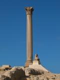 Pompey` s Pijler in Alexandrië Royalty-vrije Stock Afbeeldingen