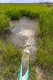 Pompi l'acqua dal canale alle risaie Immagine Stock Libera da Diritti