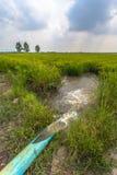 Pompi l'acqua dal canale alle risaie Immagini Stock
