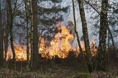 Pompier abordant la flamme Photo libre de droits
