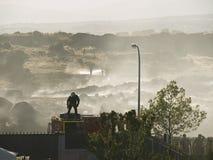 Pompier dans l'action sur le toit de camion photo libre de droits