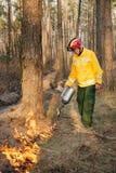 Pompiere che utilizza un fuoco controllato nella foresta fotografie stock libere da diritti