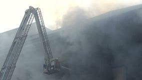 Pompiere completamente attrezzato su una scala stock footage