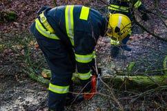 Pompieri nell'azione dopo una tempesta ventosa Fotografia Stock
