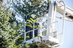 Pompieri nell'azione dopo una tempesta ventosa Immagine Stock Libera da Diritti