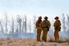 Pompiers regardant des dommages images libres de droits