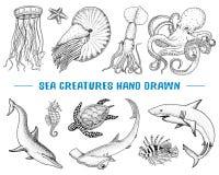 Pompilius de nautilus de fruits de mer ou de créature de mer, méduses et étoiles de mer poulpe et calmar, calamari gravé tiré par illustration de vecteur