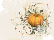 Pompoen Royalty-vrije Stock Fotografie