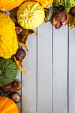 Pompoen, bladeren en kastanje Stock Fotografie