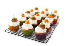 Pompoen cupcakes Royalty-vrije Stock Foto's