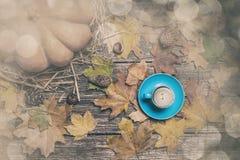 Pompoen, de bladeren van de de herfstesdoorn, kastanjes met kegel en kop van cof Stock Foto's