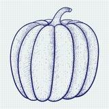 Pompoen doodle stock illustratie