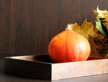Pompoen in doos met de herfstbladeren Royalty-vrije Stock Foto's
