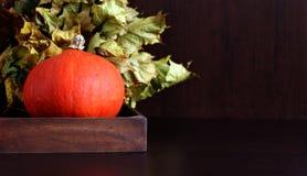 Pompoen in doos met de herfstbladeren Royalty-vrije Stock Foto