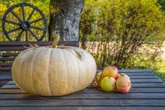 Pompoen en appelen op de herfstlijst Royalty-vrije Stock Foto's