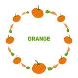 Pompoen en wortel vectorillustraion Stock Afbeeldingen