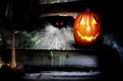 Pompoen Halloween stock foto